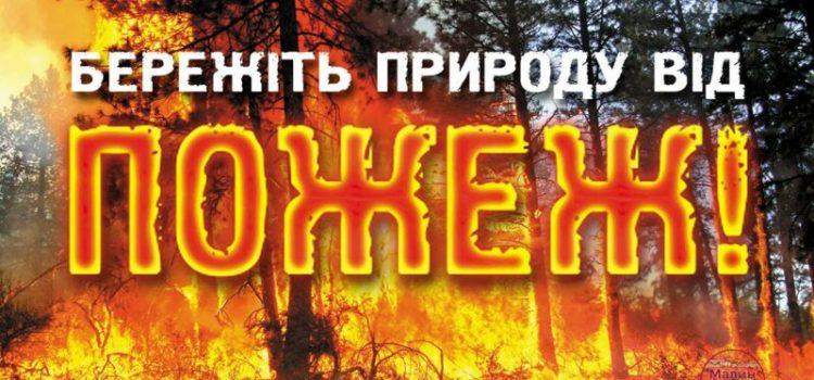 Кількість пожеж в екосистемах невпинно зростає