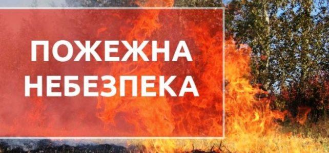 Під час надзвичайної пожежної небезпеки зростає кількість пожеж в природних екосистемах