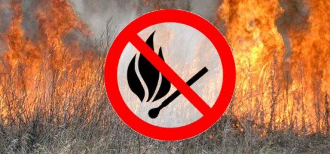 Протягом чотирьох днів в області через спалювання сухої трави сталося 95 пожеж, вигоріло 224 га сухої рослинності (оновлено)