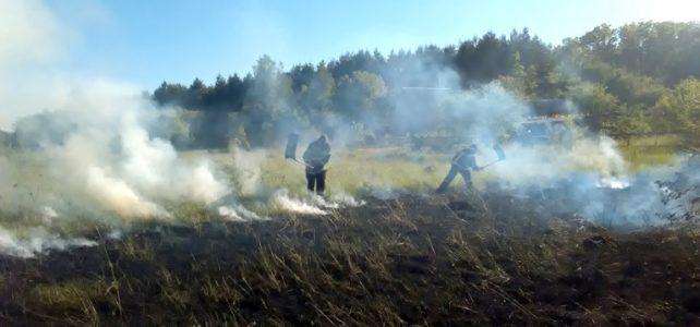 За минулу добу в області сталися 2 торф'яні пожежі та 19 пожеж на відкритих територіях